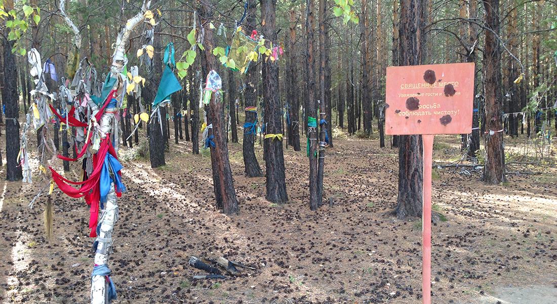 Buddhist sacred place trees